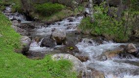 从一座比利牛斯山的很多的山小河在西班牙 影视素材