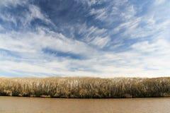 从一条风船的看法在里约de la Plata 库存照片
