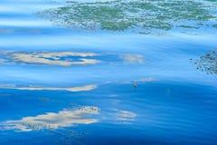 从一根钓鱼竿的渔夫` s红色浮游物在大海 免版税库存照片