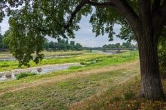 从一棵树下面的秋天风景与落在一条宽河离开与象草的银行和桥梁通过它与 免版税库存图片