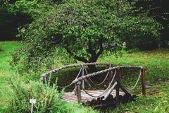 从一棵树的桥梁与扶手栏杆 免版税图库摄影