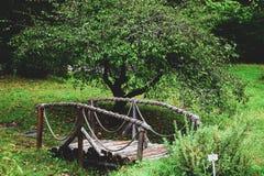 从一棵树的桥梁与扶手栏杆 库存图片