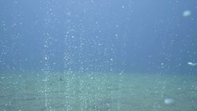 从上升含沙的海底的气泡浮出水面点视图游泳下潜 影视素材