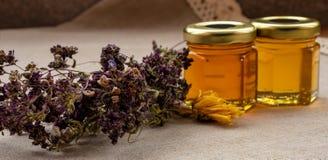 从不同的花的蜂蜜 图库摄影