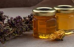 从不同的花的蜂蜜 免版税库存图片