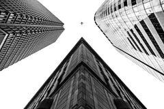 从与一架飞机的低角度射击的三个高楼在黑白 库存图片