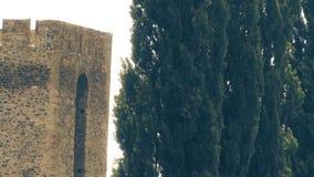 从中古、城楼和木头的老堡垒 股票录像