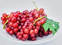 从中国的新鲜的红葡萄 库存照片