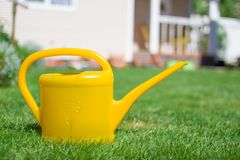 从事园艺或种植概念 庭院工作 黄色喷壶 图库摄影