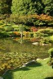 从事园艺日语 免版税库存图片