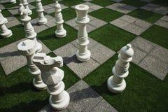 从事园艺是棋枰 免版税图库摄影