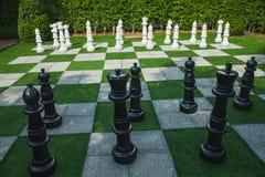 从事园艺是棋枰 库存图片