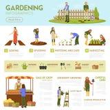 从事园艺的Infographics模板 库存例证