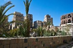 从事园艺萨纳也门 免版税库存图片