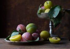 从事园艺 在葡萄酒银盘的黄色和紫色李子在农村黑暗的桌上 图库摄影