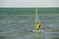 从事 行使在风平浪静或海洋的冲浪者 免版税库存照片