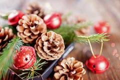 从云杉和树锥体分支的圣诞节构成  库存图片