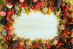从五颜六色的秋叶、蘑菇、野玫瑰果、花楸浆果、苹果、坚果、锥体和曲奇饼的框架在木背景 库存照片