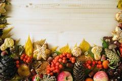 从五颜六色的秋叶、蘑菇、野玫瑰果、花楸浆果、苹果、坚果、锥体和曲奇饼的边界在木背景 免版税库存照片