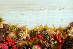从五颜六色的秋叶、蘑菇、野玫瑰果、花楸浆果、苹果、坚果、锥体和曲奇饼的边界在木背景 库存图片