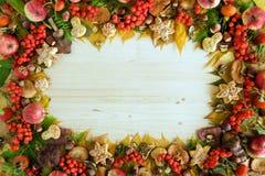 从五颜六色的秋叶、蘑菇、野玫瑰果、花楸浆果、苹果、坚果和曲奇饼的框架在木背景 库存图片