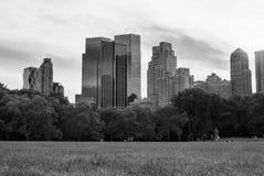 从从中央公园的草皮水平看见的摩天大楼-黑白照片,放大有些 库存照片