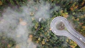 从低谷上的街道一个有薄雾的森林秋天、鸟瞰图飞行通过云彩与雾和树 影视素材