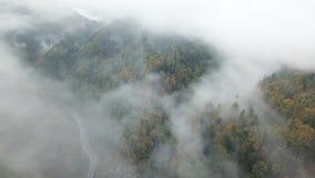 从低谷上的街道一个有薄雾的森林秋天、鸟瞰图飞行通过云彩与雾和树 股票视频