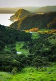 从俯视泰勒` s海湾和Opoutama陆岬, Mahia半岛,北岛,新西兰的小山的看法 库存照片