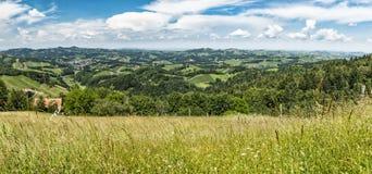 从全景酒路的看法向南styrian葡萄栽培区域 库存图片