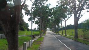 从公共汽车的新加坡路 影视素材