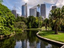 从公园的悉尼街市视图 库存图片