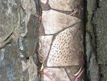 从公墓墓碑修剪的花园铺路石, 12 免版税库存图片