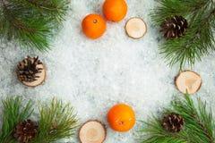 从冬天森林的圣诞节背景 库存照片