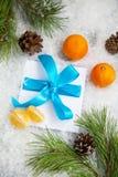 从冬天森林的圣诞节背景 免版税库存图片