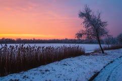 从匈牙利的冬天早晨 免版税库存图片