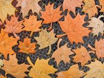 从南瓜皮肤切开的槭树叶子 免版税库存照片