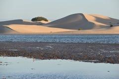 从南非的最大的沙丘在星期天河附近在Addo大象附近的科尔切斯特停放 图库摄影