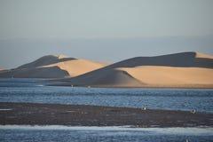 从南非的最大的沙丘在星期天河附近在Addo大象附近的科尔切斯特停放 免版税库存照片