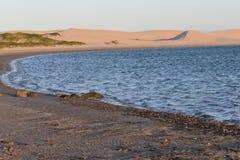 从南非的最大的沙丘在星期天河附近在Addo大象附近的科尔切斯特停放 免版税库存图片