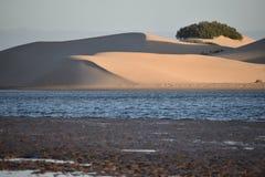 从南非的最大的沙丘在星期天河附近在Addo大象附近的科尔切斯特停放 库存图片