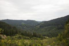 从博尔塞克的风景 免版税图库摄影