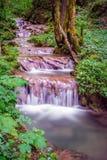 从台阶的瀑布 库存照片