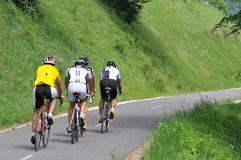 从后面看见的小组骑自行车者 免版税图库摄影