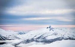 从吹口哨观看的黑象牙峰顶, BC 库存照片