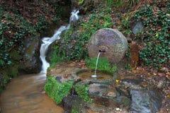 从喷泉出来的自然水 库存图片