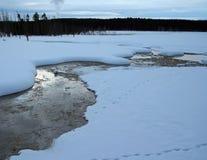 从喷泉放出在冬天期间在黄石国家公园在怀俄明美国 免版税库存照片