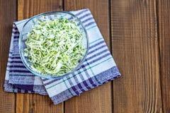 从圆白菜和草本的沙拉在一个玻璃碗 复制空间 co 免版税库存照片