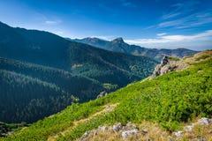 从在小丘污蔑之间的山峰Giewont 免版税库存照片