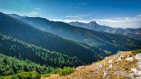 从在小丘污蔑之间的山峰Giewont Tatra 免版税库存照片